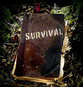 Survival Facts that May Save Your Life | SurvivalRing News World | Scoop.it