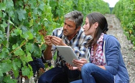 Première cuvée pour le collectif Wine startups ! | wine startups | Scoop.it