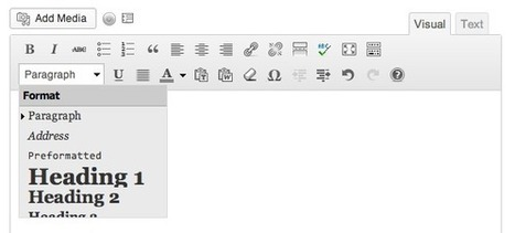 7 Wordpress knoppen voor journalisten (Online Journalism Blog) | Online journalistiek | Scoop.it