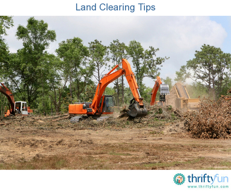 Land Clearing Tips | Lot Clearing Guide in Dallas | Scoop.it