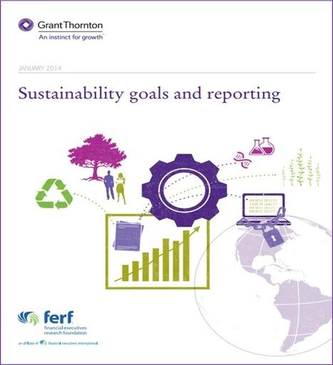 Pourquoi les directeurs financiers ne sont pas impliqués dans le reporting de développement durable | SUSTAINABILITY REPORTING | Scoop.it