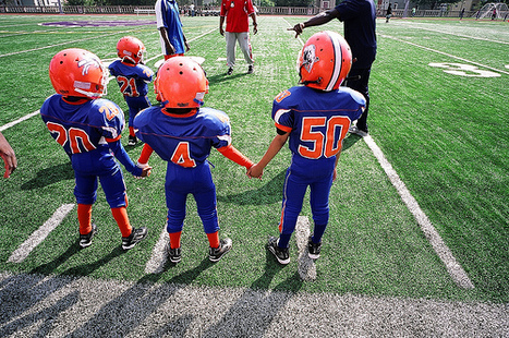 Pop Warner Football League will background check all 700 members   Employee Background Checks   Scoop.it