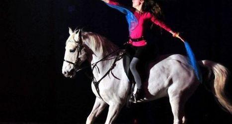 Trois jours entièrement consacrés au cheval | Salon du Cheval | Scoop.it