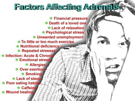 Adrenal Fatigue Symptoms & Treatment | Disease and Treatment | Scoop.it