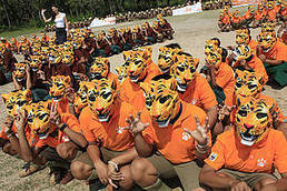 The Tiger Summit   Tiger Conservation   Scoop.it