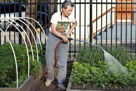 Urban farming in Detroit: sowing seeds of hope in the motor city? | The Barley Mow | Scoop.it