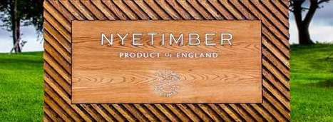 Q&A: Eric Heerema of Nyetimber | Vitabella Wine Daily Gossip | Scoop.it