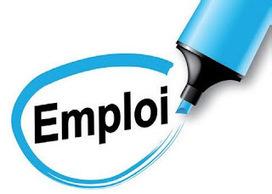 Tic-Tac propose un emploi de coordinateur à temps plein ! | Haute-Normandie | Scoop.it