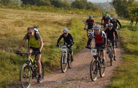 Le vin nouveau se déguste à vélo | Alsace Actu | Scoop.it