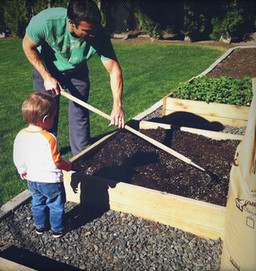 Build a Raised Bed to Elevate Your Garden | HOMEspaces | Scoop.it