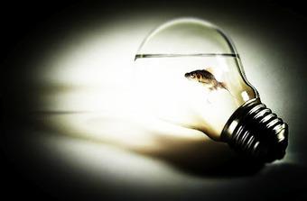 CristinaSkyBox: ELT Revisions | Digital story telling in  EFL classes. | Scoop.it