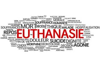 euthanasie-religions.overblog.com | euthanasie | Scoop.it