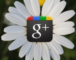 Google+ on aime, un peu, beaucoup,… | Les trouvailles de Froggy'Net | Scoop.it