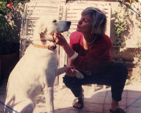 monteverdelegge: La mia vita con Paco - un racconto in quattro puntate / 1 | Racconti originali di Monteverdelegge | Scoop.it