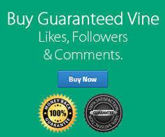 Why Buy Vine Followers   Marketing   Scoop.it