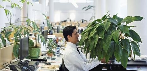 Bloß nicht authentisch! Tipps für Bewegtbild in der Unternehmenskommunikation   pressesprecher   Unternehmeskommunikation und neue Medien   Scoop.it