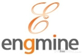 EngmineSEO, New York, Services, Internet | Engmine SEO | Scoop.it