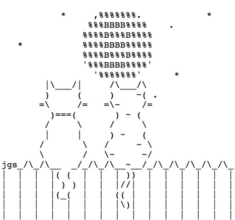 Lightning First Strike: Christian Bought a Cat | ASCII Art | Scoop.it