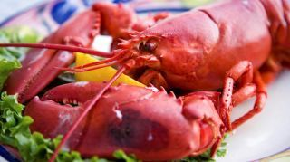 Top 10 seafood restaurants in the US | Diary of a serial foodie | Scoop.it