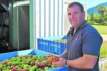 Chilli grower taps soil solution - The Land Newspaper | Land and Water Management | Scoop.it