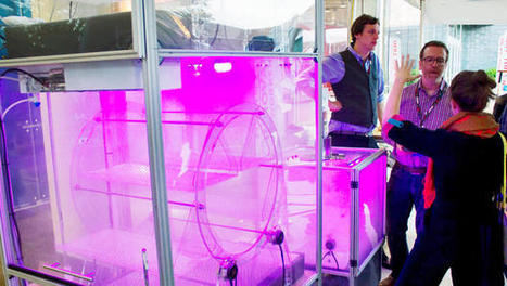This Glowing Purple Cube Is An Indoor Farm - Fast Company | Hydroponics | Scoop.it