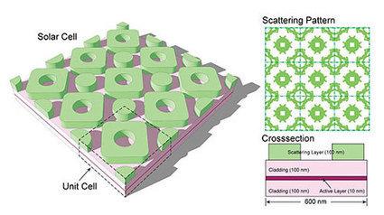 Evolution inspires more efficient solar cell design | NanoTechnology Revolution | Scoop.it