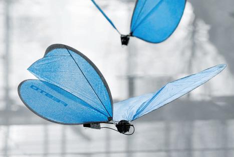 Festo's Fantastical Insectoid Robots Include Bionic Ants and Butterflies - IEEE Spectrum | Heron | Scoop.it