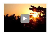 Ayurveda Spa Resort & Retreat India - Ananda Spa | Health and Fitness | Scoop.it