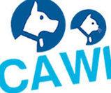 CAWI Website - Webfeet Design | CAWI Website | Scoop.it