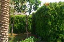 Vertical garden planters,vertical gardens in dubai,metal,aluminum,pots,containers | 123Coimbatore | Scoop.it