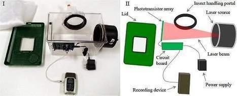 Sensor a laser identifica pernilongos pelo zumbido   tecnologia s sustentabilidade   Scoop.it