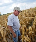Drought devastates US crops - Impact on food prices likely to be felt around the world. | Price of food | Scoop.it