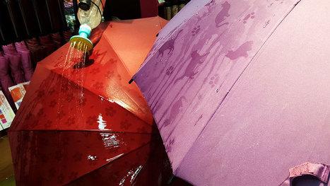 These #Japanese #Umbrellas Reveal Hidden Patterns When Wet #Japan | What makes Japan unique | Scoop.it
