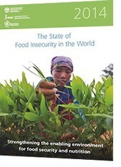 The State of Food Insecurity in the World| FAO | Food Insecurity | Scoop.it