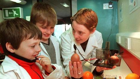 Time to make science work in the classroom - Irish Times | Inquiry Learning in Primary Science Classrooms | Scoop.it