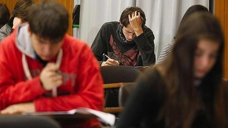 La Educación en España, al desnudo: factores que emborronan las notas del alumno y otros que no influyen para nada | Orientación Educativa - Enlaces para mi P.L.E. | Scoop.it