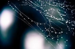 Webs imprescindibles para expertos digitales | Foxize School | Tips&Tricks | Scoop.it