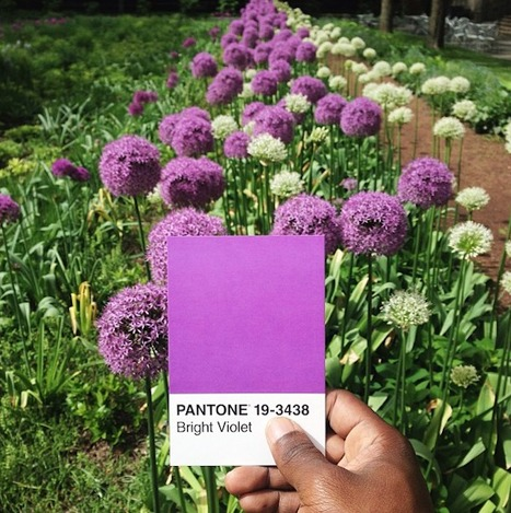 Paul Octavious The Pantone Project... | Art for art's sake... | Scoop.it