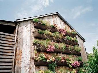 4 Vertical Gardening Ideas | Wellington Aquaponics | Scoop.it