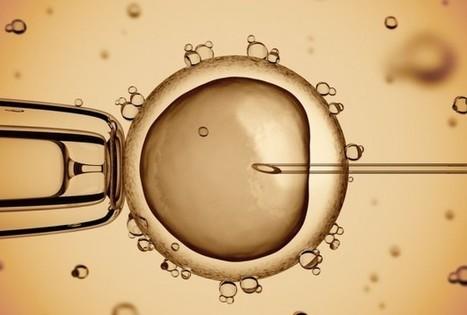 Gastric-Brooding Frog Genome Reactivated By Lazarus Project - Science News - redOrbit | Crescat scientia; vita excolatur | Scoop.it
