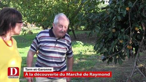A la découverte du marché de Raymond | Local et solidaire | Scoop.it