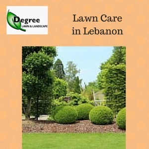 Things To Avoid For Proper Lawn Care Lebanon Experts Share   Great Reads   Scoop.it