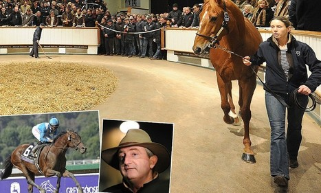 Frankel fever lives on as fans flock to the £4.2m sale of Dancing Rain | Horse Racing News | Scoop.it