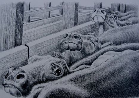 ABC OPEN: Art from the Cattleman's Daughter | Veganism | Scoop.it