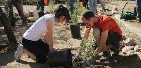 UA Program Promotes Smart Water Use in Arizona and Beyond | UANews | CALS in the News | Scoop.it