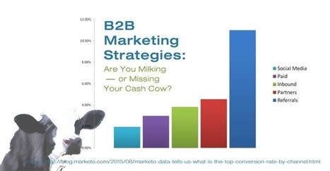 Are Your B2B Marketing Strategies Missing a Cash Cow   The Twinkie Awards   Scoop.it