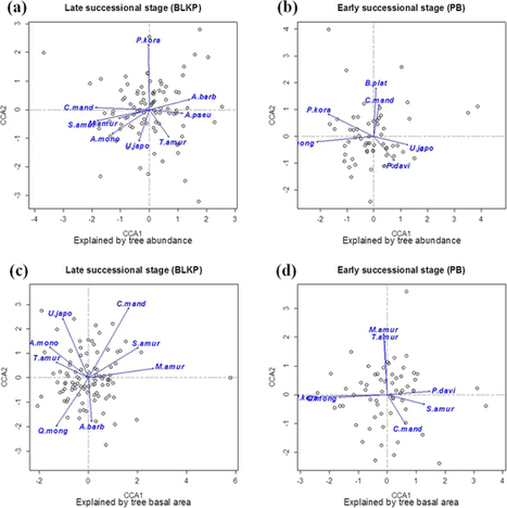 Aboveground-belowground biodiversity linkages differ in early and late successional temperate forests : Scientific Reports | Biologie Intégrative | Scoop.it
