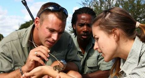 Gap Year Projects - Game Ranger Training. | Worldwide Experience | AnimalConservation | Scoop.it