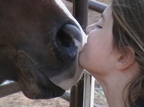 3 Steps To Evaluating Your Horse For Potential Problems   Horse and Rider Awareness   Scoop.it
