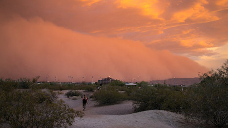 Swirls of Dust and Drama, Punctuating Life in the Southwest | Sustainable Futures | Scoop.it